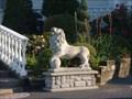 Image for Zorbas Lions - Kingston, Ontario