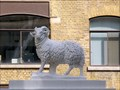 Image for Sheep - New Street, London, UK