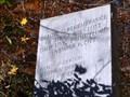 Image for Toccoa Falls Disaster - Toccoa Falls, GA
