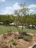 Image for Sarkey's Center Butterfly Garden - University of Oklahoma - Norman, OK