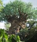 Image for Tree of Life - Satellite Oddity - Animal Kingdom, Florida, USA
