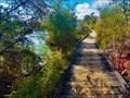 Image for Lakeside Boardwalk, Lake Rotorua. North Is. New Zealand.