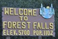 Image for Forest Falls ~ Population 1102