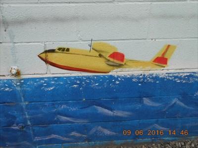 Avion-citerne pour combattre le feu du haut de l'air.  Tanker aircraft to fight the fire from the top of the air.