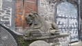 Image for Lions in Mendig - Germany, Rhineland-Palatine
