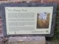 Image for The Bath House - Plunge Pool - Congleton, Cheshire, UK.