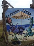 Image for Funkie Zebra - Rockport, TX