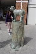 Image for Lamb -- St George's Lane, Canterbury, Kent, UK