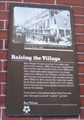 Image for Raising the Village
