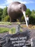 Image for Tasman Giant Kiwi