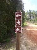 Image for Longleaf Trail at Rodman Resivoir, Palatka, Fla