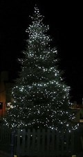 Image for Christmas Tree in Parliament Square - Ramsey, Isle of Man