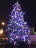 Image for Downtown Christmas Tree - Denton, TX