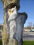 "Image for ""BEAR  HIDEOUT POLE""  Brooklin, Ontario CANADA"