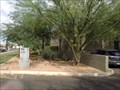 Image for ASU - School of Life Sciences Herbarium - Tempe, AZ