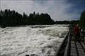 Image for Storforsen Rapid water