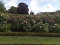 Image for Rose Gardens, Hampton Court Palace, Surrey, UK
