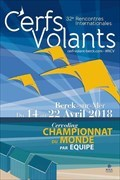 Image for Le Festival des Rencontres Internationales de Cerfs-Volants - Berck-sur-Mer, France