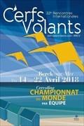 Image for Le Festival des Rencontres Internationales de Cerfs-Volants - Berck-sur-Mer, France