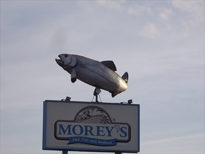Morey 39 s fish house motley mn elevated everyday for Morey s fish