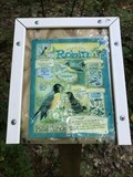Image for Wege Foundation Natural Area Self Guided Trail - Lowell, Michigan