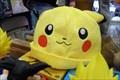 Image for Del Mar Fair Pikachus  -  Del Mar, CA