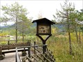 Image for Ducks and Plants - Seefeld in Tirol, Austria
