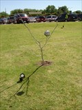 Image for Moon Tree - Plano, Texas