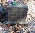 Image for Dovie Lee Peters - Haney's Chapel Cemetery - Langston, AL