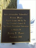 Image for Tree dedicated to Mr. Harvey Fraser, Pembroke, Ontario, Canada