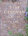 Image for Tim Godwin - St George's Garden, London, UK