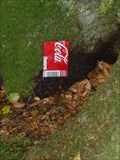 Image for Small Soda Can Fairy Door - Portpatrick, Scotland, UK