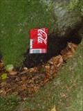 Image for Small Soda Can Fairy Door - Portpatrick, Scotland, UK