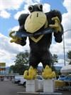 Blackbird (Strip View), Medford, OR