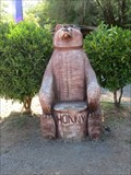 """Image for Bear Chair - """"Bear With Me"""" - Garberville, CA"""