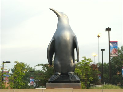 Youngstown State University Penguin ~ Youngstown, Ohio - ... on