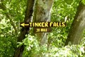 Image for Trail to Tinker Falls - Fabius, NY