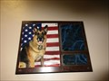 Image for Sunport Retired Working Dogs - Albuquerque, NM