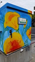 Image for California Poppies - Santa Clara, CA