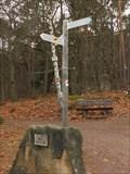 Image for Arrows near St. Anna Hütte in Burrweiler - RLP / Germany