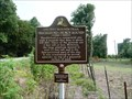 Image for Schackleford Church Mounds: Ancient Mounds Trail