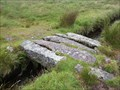 Image for Five Slab Clapper Bridge - Devonport Leat, Dartmoor