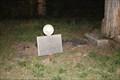 Image for Helena Kimble Dill Nelson -- SH 21, Cherokee Co. TX