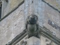 Image for St Mary's Church Gargoyles - High Street, Little Addington, Northamptonshire, UK