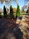 Image for World War II Veterans - Garwood, NJ