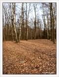Image for TB 1513-15 Zádušní les, CZ