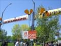 Image for California Poppy Festival - Lancaster, CA