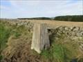 Image for O.S. Triangulation Pillar - The Neuk, Aberdeenshire.