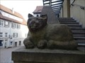Image for The Cat - Horb, Germany, BW