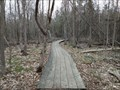 Image for Trail 26G Boardwalk in Stoney Swamp - Ottawa, Ontario, Canada